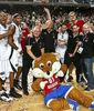 Bélgica celebra su clasificación para el próximo Eurobasket 2011 (Foto FIBA/Walter Saenen)
