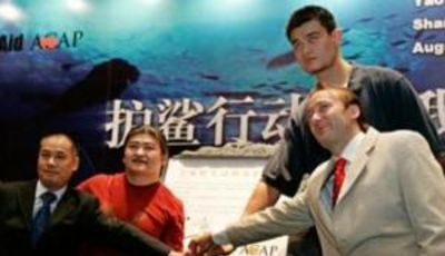 Yao Ming, en un acto con los Sharks (Foto: i.treehugger.com).