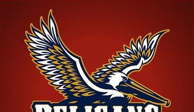 Logo no oficial de los Pelicans.